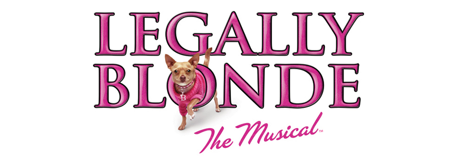 blonde stereotype essay Open document below is an essay on analysing stereotypes in 'legally blonde' from anti essays, your source for research papers, essays, and term paper examples.